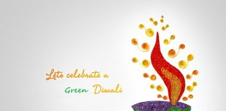 Eco Friendly Diwali Images