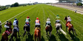 What Is a Win Bet for Horse Racing